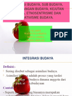 Integrasi Budaya, Sub Budaya, an Budaya