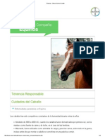 Equinos - Bayer Animal Health