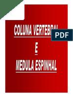 3- Coluna Vertebral [Modo de Compatibilidade]