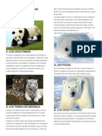 10 Animales en Peligro de Extincion