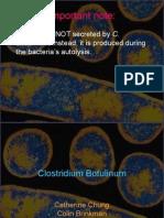 Botulinum Presentation.ppt