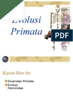 EVOLUSI-PRIMATA-1