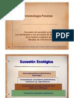 Sucesion y Entomologia Forense