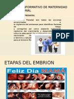 Material Informativo de Maternidad