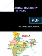 Land of Unity in Diversity (2)