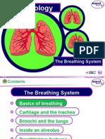 KS4 the Breathing System