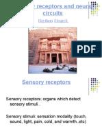 05c Sensory Receptors