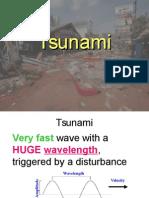 Tsunami Slides (1)