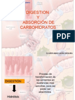 Digestión y Absorción de CarbohidratosNAP