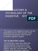 Anatomy & Physiology of the Digestive System-powerpoint