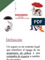SEGUROS (1)