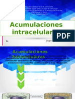 Acumulaciones Intracelular