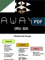 02 Patricia Presentación Awayu Coproca v02 Final