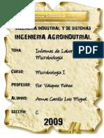 Informes Microbiologia I