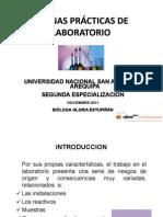 CURSO_TALLER_BPL_UNSA_noviembre_diciembre_2011_[Modo_de_compatibilidad].pdf