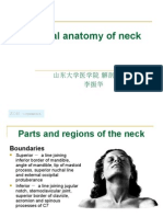 Anatomi leher.ppt