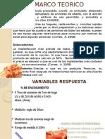 Expo Estadistica 2