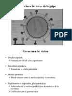 Tema 3M (Virologia)BN