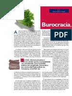 Analisis sobre la burocracia