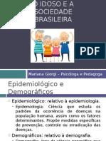 O Idoso e a Sociedade Brasileira
