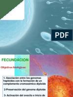 Clase_Fecundaci_n_alumnos.pdf