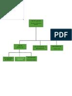 organizacion de una plantao