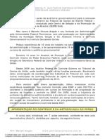 Auditor Governamental TCDF