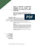 representacion fonologica en el cerebro.pdf