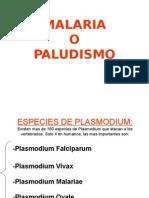 Copia Paludismo.ppt