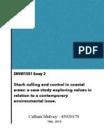 Mulvey Callum EnvironmentalValues ENVM1501