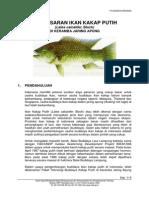 Pembesaran-Ikan-Kakap-Putih.pdf