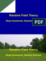 Random field theory.ppt