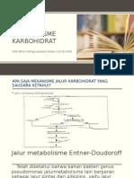 Metabolisme Karbohidrat Ke 2