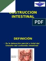 obstrucion intestinal