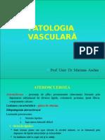 s2 Curs 2 - patologia vasculara.ppt