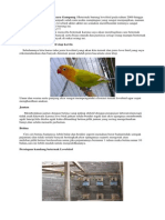 ternak love bird.pdf