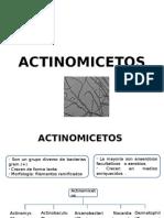 Seminario Bacterias 1