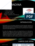 YPFB Andina
