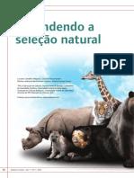 Genetica Entendendo Selecao Natural