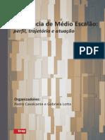 Burocracia de Médio Escalão