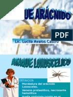 Ataques de Aracnidos