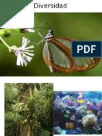 Diversidad ecologia