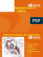 23. EKG Basica e Interpretacion ECG