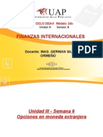 6. Opciones en Moneda Extranjera