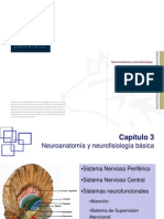 1.Neuroanatomia Y Neurofisiologia