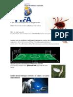 Que Significan Las Siglas FIFA