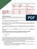 CLASES DE COLOIDES.docx