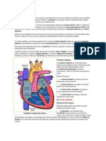 Cavidades Cardíacas