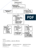Patofisiologi Retensio Plasenta