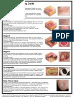 Pressure Ulcer Guide 8 08